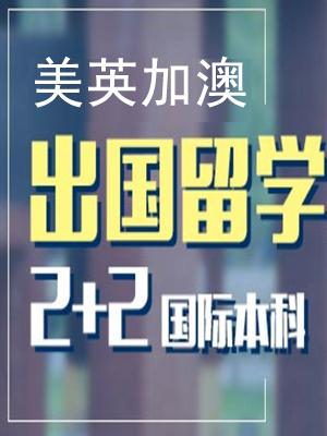 中央财经大学金融2+2国际本科(IUP)招生简章
